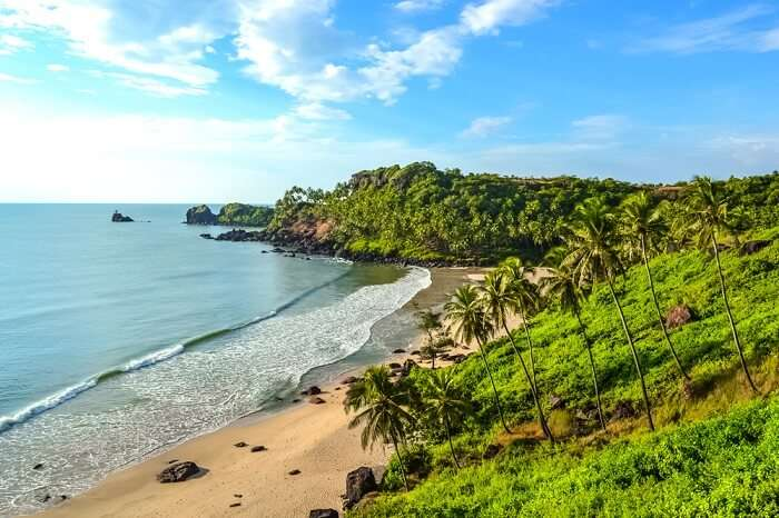 Image result for beach in goa