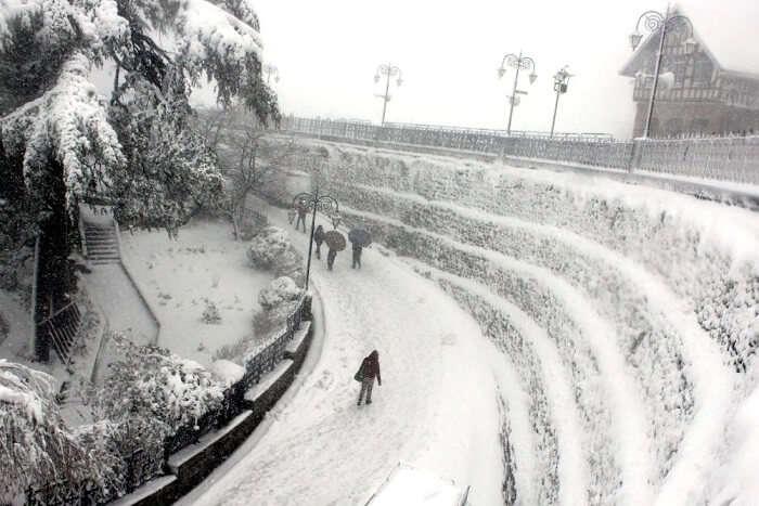 snowfall in shimla, himachal pradesh on jan 22, 2019
