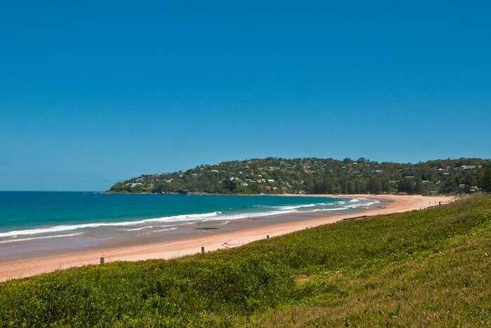 About Palm Beach In Australia