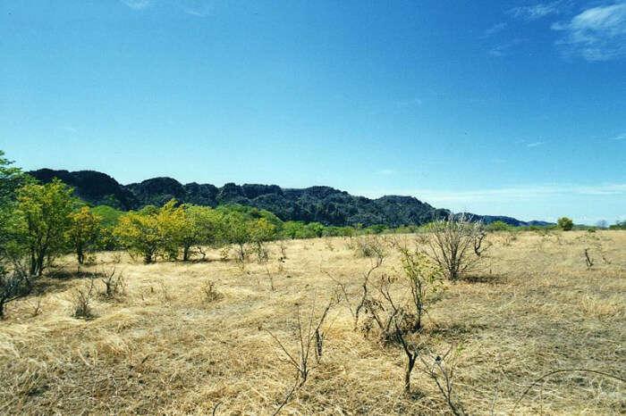 Ankarana National Park View