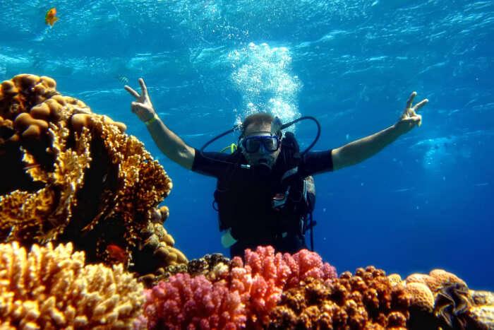 A person Scuba Diving in Queensland