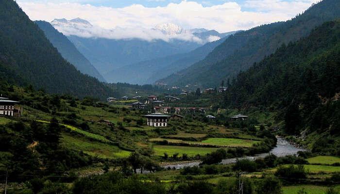The Lush Green Haa Valley