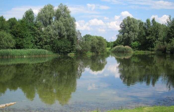 Munich's Lakes