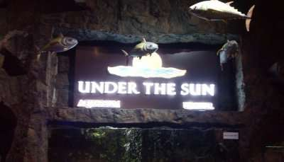 Under The Sun Aquarium