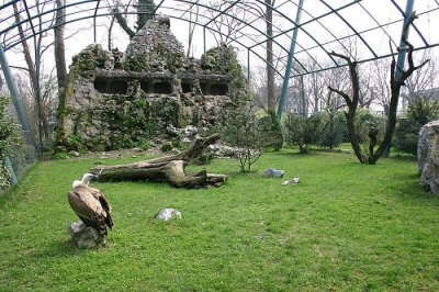 view of the inside of the zoo