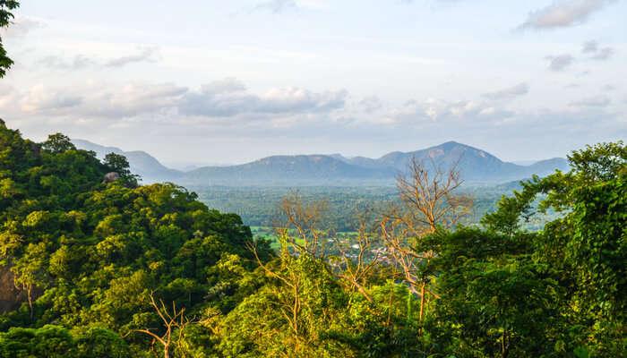 Things To Do In Kurunegala