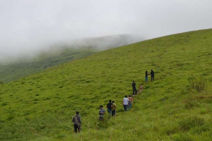 Brahmagiri Hills Trek
