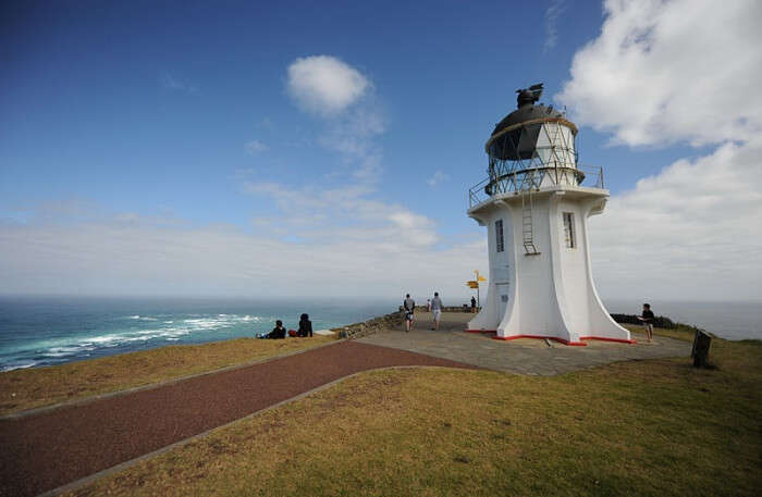 Cape Reinga Day Tour