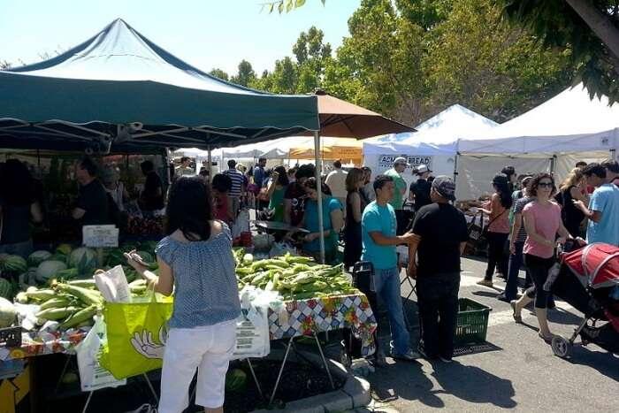Hawke's Bay Farmers Market