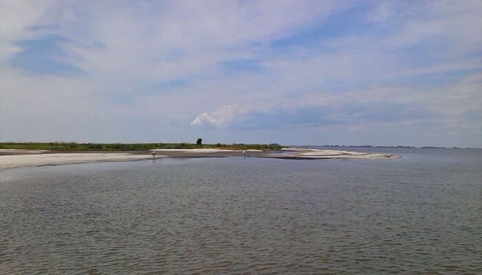 janes island maryland