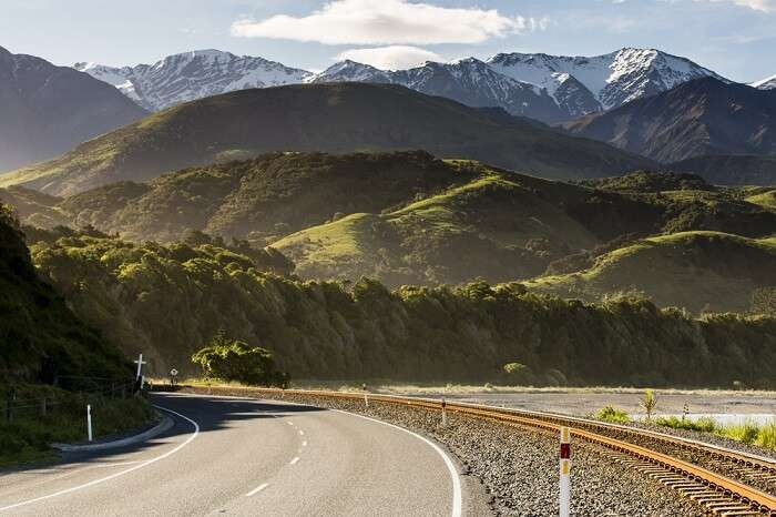 Kaikoura Travel Guide For First Time Visitors To New Zealand