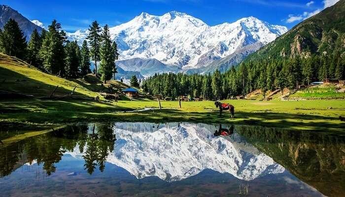 Nanga Parbat In Pakistan