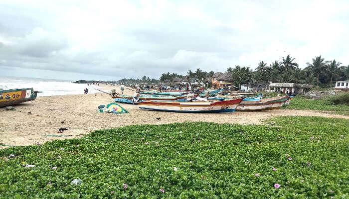 Serenity Beach in Pondicherry