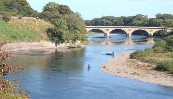 Tweed River View