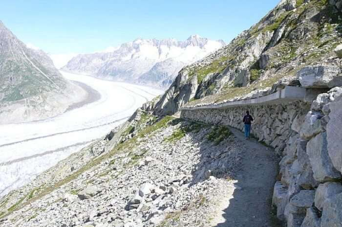 Aletsch Glacier Trail