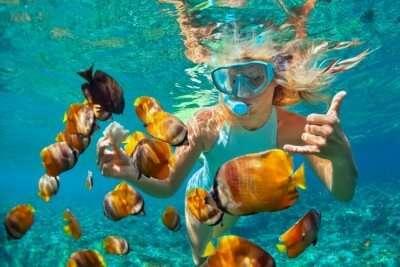 Amazing Snorkeling In Queensland