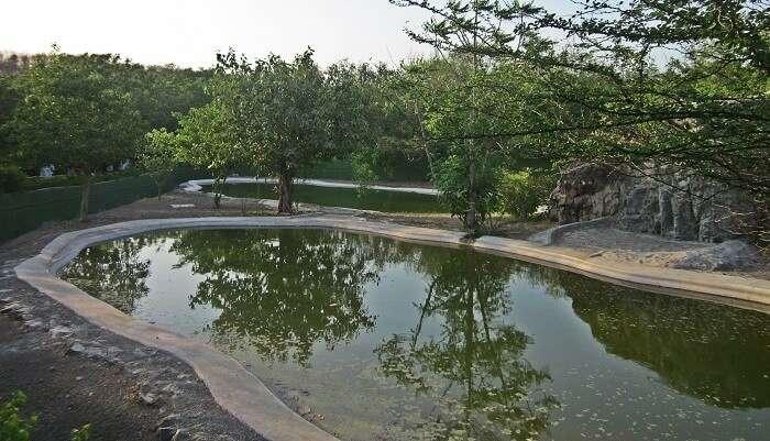 Parks in Gujarat