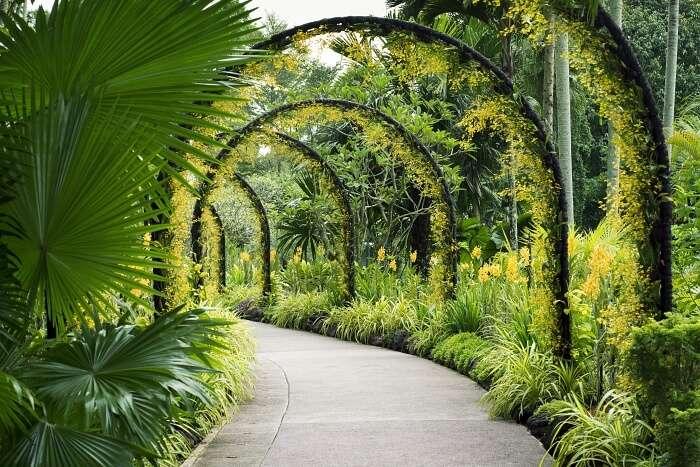 Teban Gardens