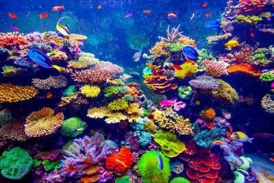 places to visit near Underwater World