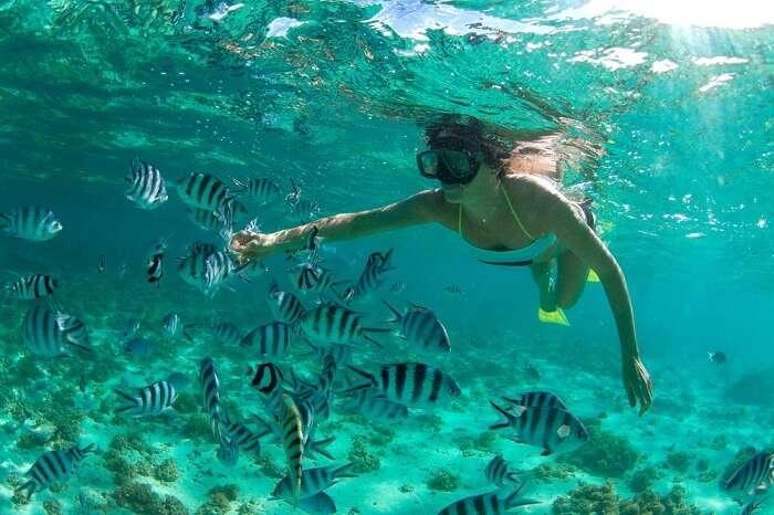 snorkeling port louis