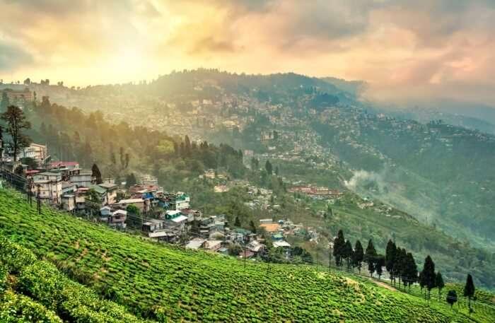 Weather In Darjeeling In May