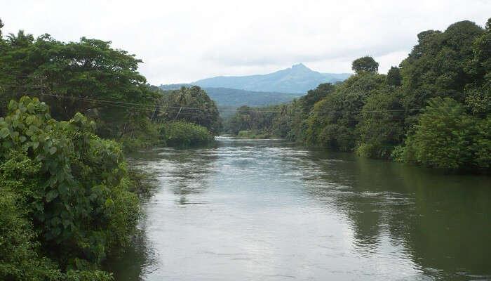 Meenachil River