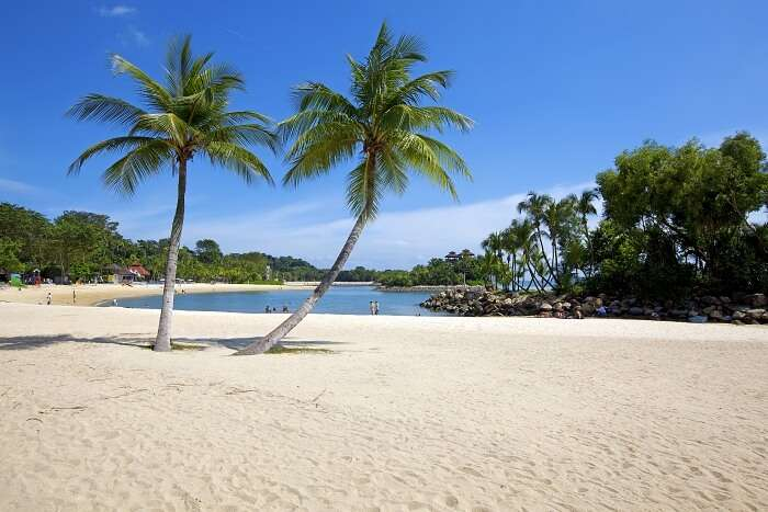 Beaches In Bayfront