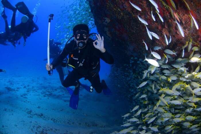 Best Time For Scuba Diving In Kerala