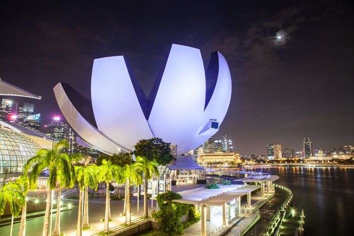 newton in Singapore
