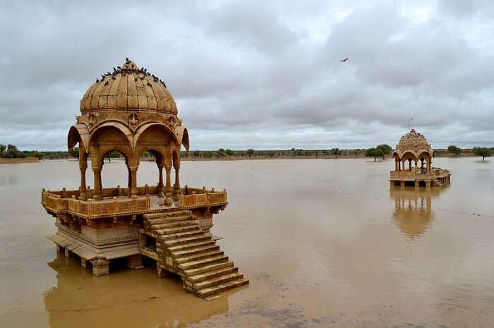 Gadsisar lake welcomes seasonal birds during the monsoon season