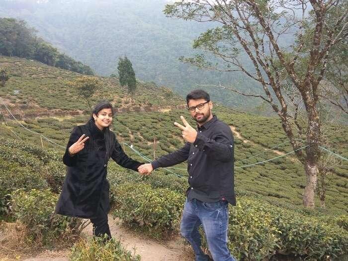 lush green Tea plantations