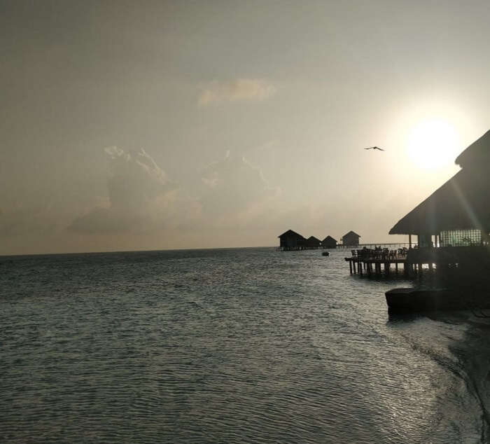 soothing views