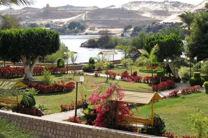Lush islands and islets dot the Nile River of Aswan