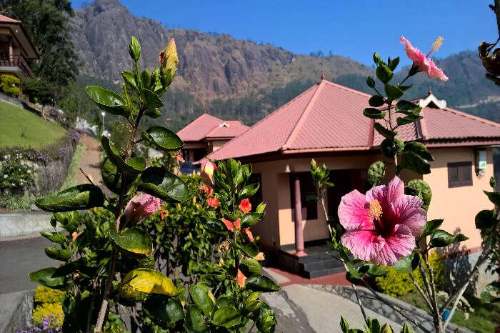 Kodianthara home