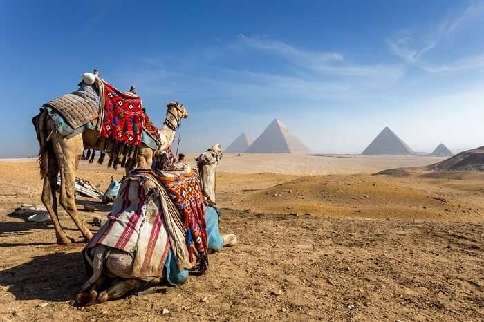 Tips To Visit Cairo cover