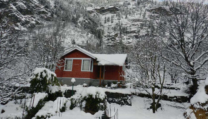 Tree House Cottages in Manali