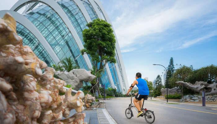 Best Things To Do In Sennett Singapore