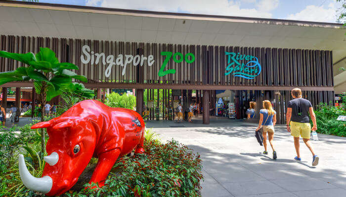 Best Things To Do Near Singapore Zoo