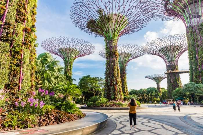 woman tourist at gardens by the bay