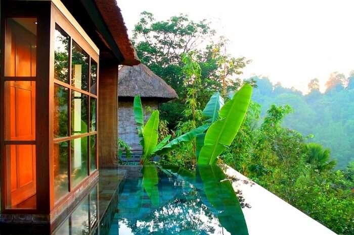 thekkady villas
