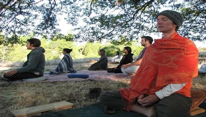 Ananda Sangha Yoga