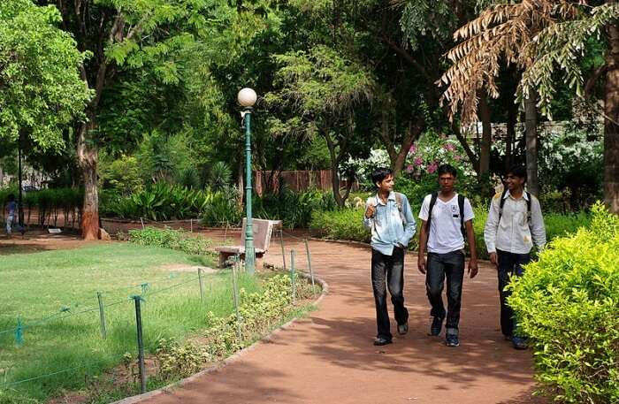 Best Time To Visit Law Garden In Ahmedabad