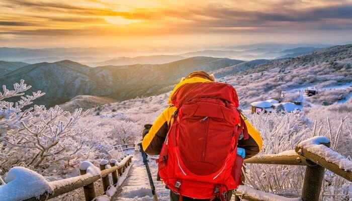 Hiking in Seoul cover