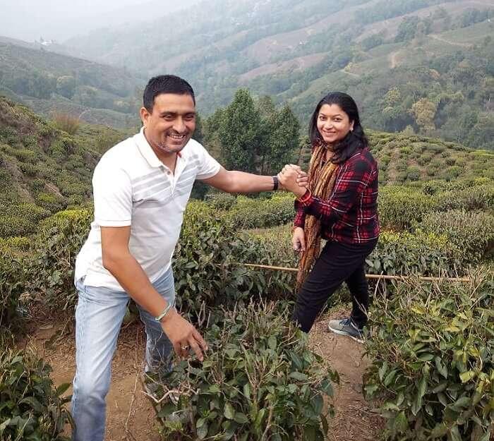 at the tea garden of the darjeeling