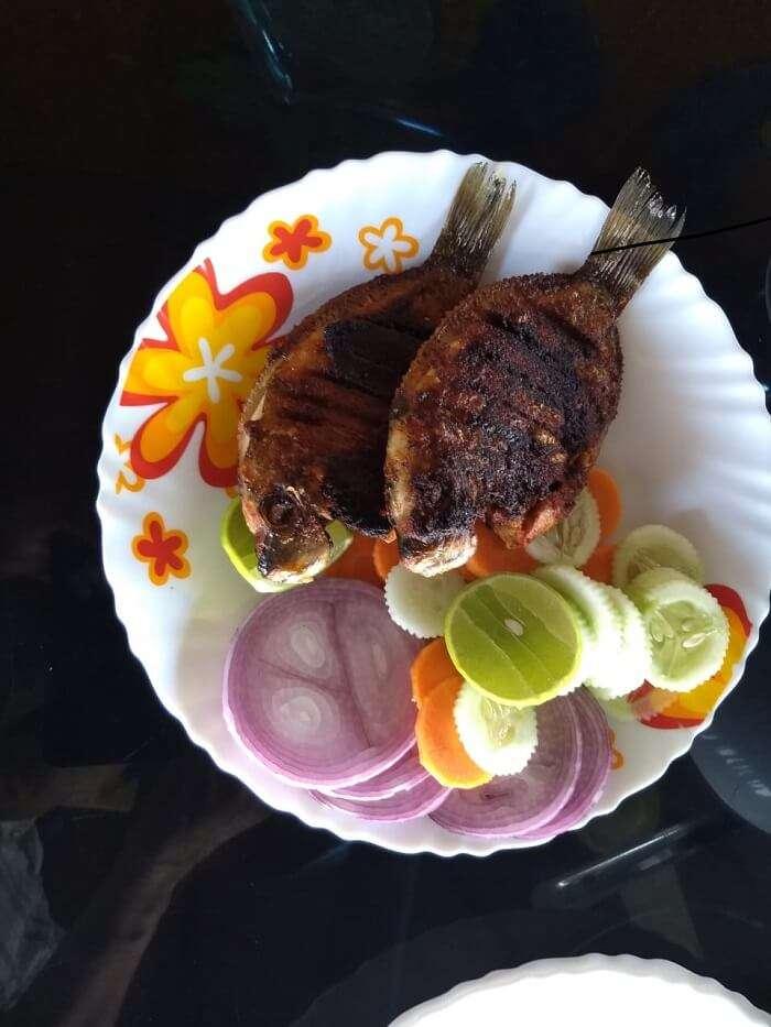 fish of Kerala