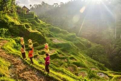 Places To Visit In Jembrana Regency in Bali For 2 Days cover