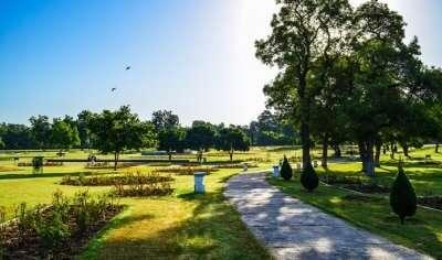 Rose Garden in Chandigarh