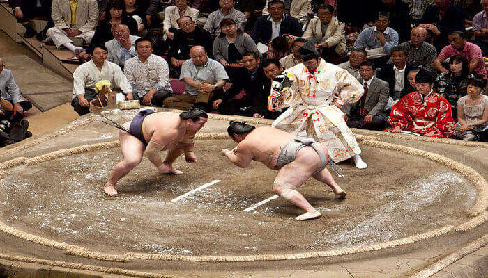 Watch A Sumo Show