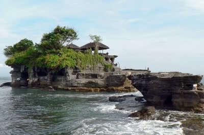 Magic Tree Bali