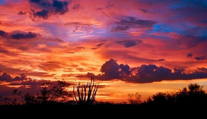 arizona monsoon pictures